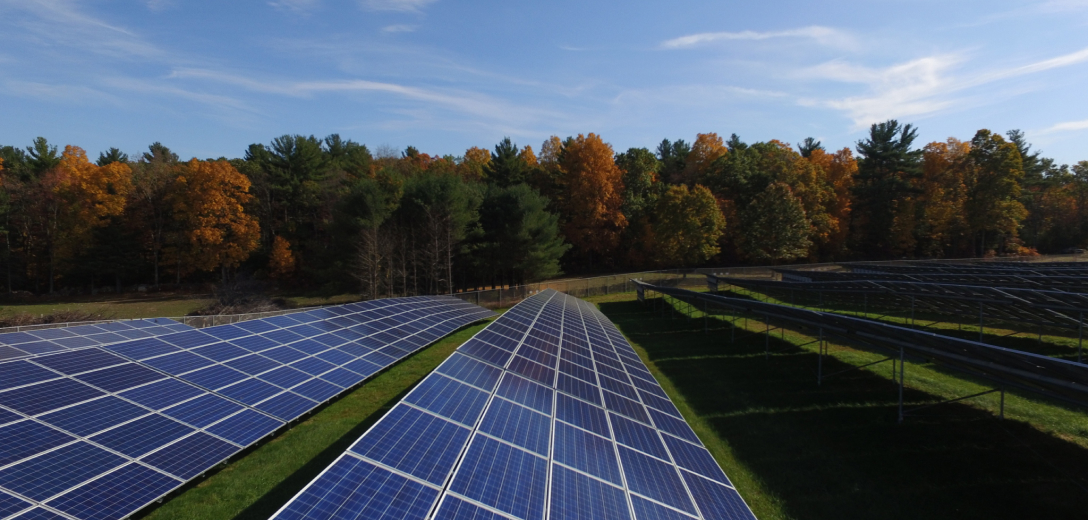 Solar farm with fall trees in background.